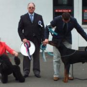 Best In Show [Utility Group Winner] - Vanazzen Mini Viva JW (Miniature Poodle) Res. Best In Show [Working Group Winner] - Dronski's Amadeus JW (Dobermann) with Judge Mr. Keith Baldwin