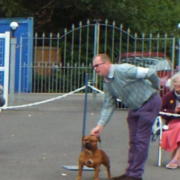 Terrier Group Winner - Jolihem Himself SH CM (Staffordshire Bull Terrier)