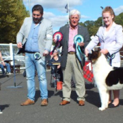 Best in Show [Toy Group Winner] - Habiba Go Forth (Chinese Crested) Reserve Best in Show [Utility Group Winner] - Zorbaloo Howlin Wolf (Akita) with Judge Mr. J. Falconer (Scarista)